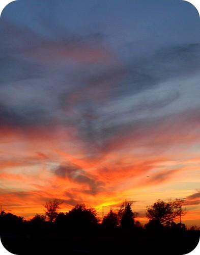Sunrise 10/31/2010
