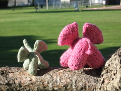 knit elephant bums