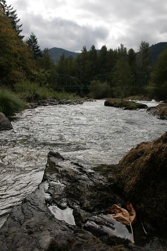 Willamette River, Fall 07