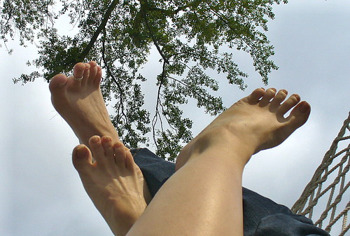 Toes to trees