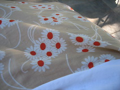 Close-up of Skirt Fabric