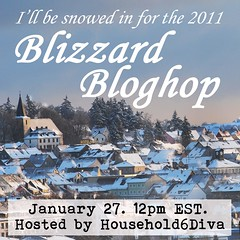 Blizzard Bloghop 2010 hosted by Household 6 Diva