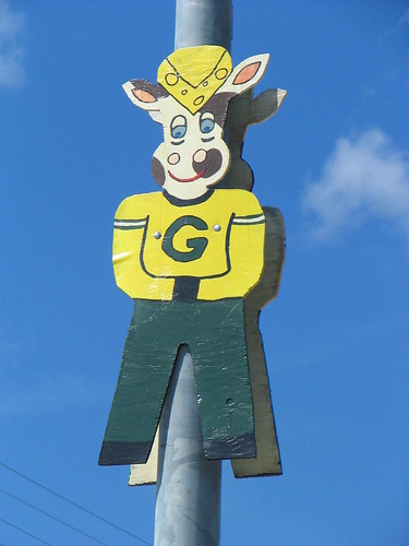 Green Bay Packer Cheesehead cow by - Deb -, on Flickr