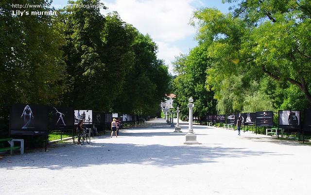 Ljubljana市立公園的入口處,正好有個攝影展,攝影作品被製成大幅看板展示,看得很過癮!