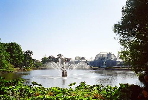 Front Pond, Kew Garden