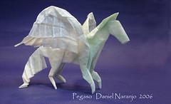 Figura 1: Fotografía de Pegaso (Beccary 2012)