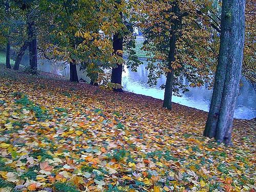 Herfst on High