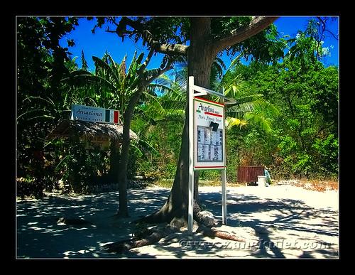 Angelina, Malapascua Island, Cebu