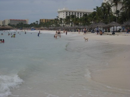 Palm Beach After Hurricane Felix
