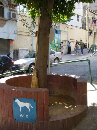 Water Closet for dogs