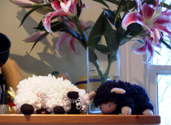 Congratulation from G & M to Daisy (I couldnd find any daisies to replace the lilies...).