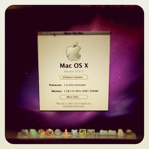 OSX 10.6.5 on Dell Mini 10v