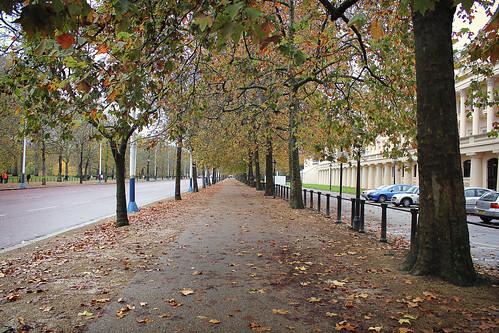 Outono - de Fernando Álvarez