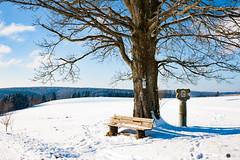 Winter rund um die Ködeltalsperre-2