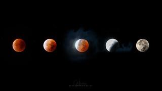 fases eclipse lunar.jpg