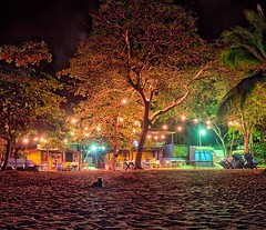 Day 298. Savannah outside the beach bar at night. Planning on doing nothing but bumming and reading today, fingers crossed I can find a cigar too. #theworldwalk #travel #costarica #savannahtww