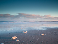 """Findhorn Sea Foam • <a style=""""font-size:0.8em;"""" href=""""http://www.flickr.com/photos/26440756@N06/24380343673/"""" target=""""_blank"""">View on Flickr</a>"""