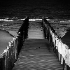 Beach Westenschouwen