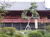 Photo:PA150070_上野-寛永寺清水観音堂-月の松 By