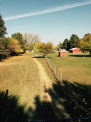 "farmyard looking back to FFRC-Big Red Barn on far right • <a style=""font-size:0.8em;"" href=""http://www.flickr.com/photos/72892197@N03/24949368580/"" target=""_blank"">View on Flickr</a>"