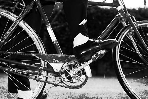 Bicicletas - de Felipe Gallego