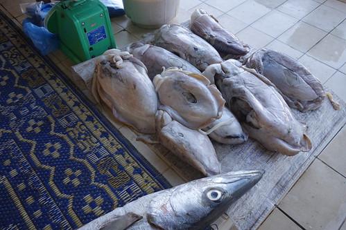 Parfois les poissons sont déposés sur des tapis.