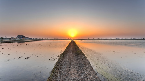 "Dirt road towards the setting sun panorama • <a style=""font-size:0.8em;"" href=""http://www.flickr.com/photos/132142211@N05/26026613125/"" target=""_blank"">View on Flickr</a>"