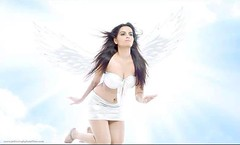 Bollywood Actress Meghna Patel Photos Set-2 (24)