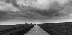 Holland, the long way home..