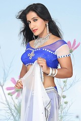 Bollywood Actress NISHA YADAV-HOT AND SEXY IMAGES-SET-3 (7)