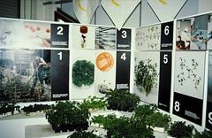 32-08-86 17 - Greenhouse 2000 Neoplants (1)
