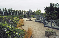 24-0886 02 - Willow Pattern Garden (2) edited-6