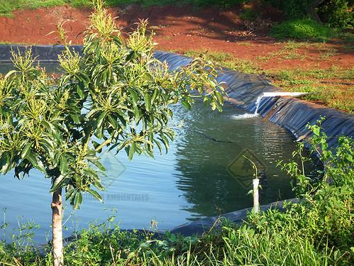Olla de Agua Michoacan 7