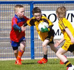 084 Loughmacrory at U8 Football Blitz Apr2016