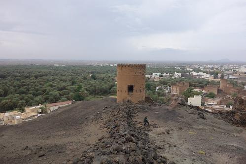 La palmeraie, la tour et le village