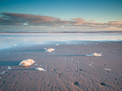 """Findhorn Sea Foam II • <a style=""""font-size:0.8em;"""" href=""""http://www.flickr.com/photos/26440756@N06/24639544719/"""" target=""""_blank"""">View on Flickr</a>"""