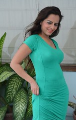 Bollywood Actress Meghna Patel Photos Set-4-HOT PHOTOS (16)