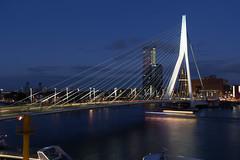 Rotterdam by Night  2015