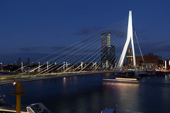 Rotterdam by Night  2015