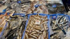 Такое рыбное разнообразие я видела только в Тасмании.