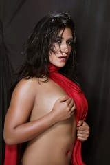 Bollywood Actress NISHA YADAV-HOT AND SEXY IMAGES-SET-1 (37)