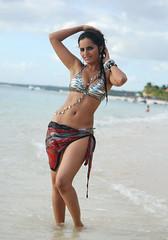 Bollywood Actress Meghna Patel Photos Set-3-HOT PHOTOS (24)