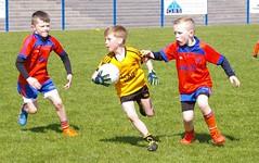 080 Loughmacrory at U8 Football Blitz Apr2016