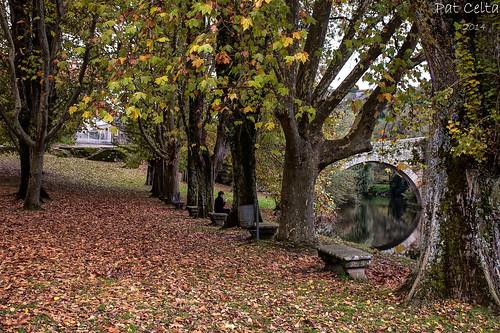 Outono - de Pat Celta
