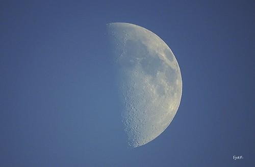 Daytime Moon Nappal Hold