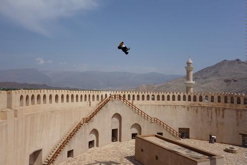 Pelico vole maintenant au dessus de la tour principale !