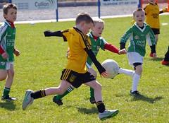 063 Loughmacrory at U8 Football Blitz Apr2016