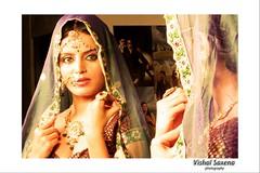 Bollywood Actress Meghna Patel Photos Set-1 (19)
