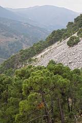 Serranía de Ronda Valley