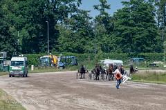 070fotograaf_20180610_ Draverij - 64ste Gouden Zweep_FVDL_Paardensport_9023.jpg